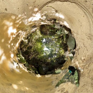 tayrona_jungle_planet